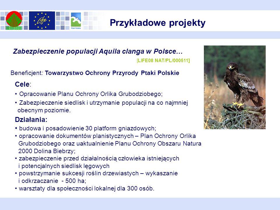 Przykładowe projekty Zabezpieczenie populacji Aquila clanga w Polsce… [LIFE08 NAT/PL/000511]